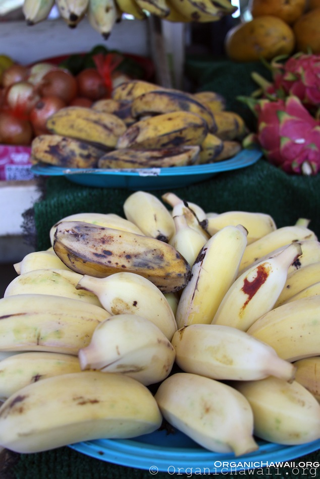 bananas at farmers market 2