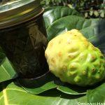 8oz Noni cream Organic Hawaii