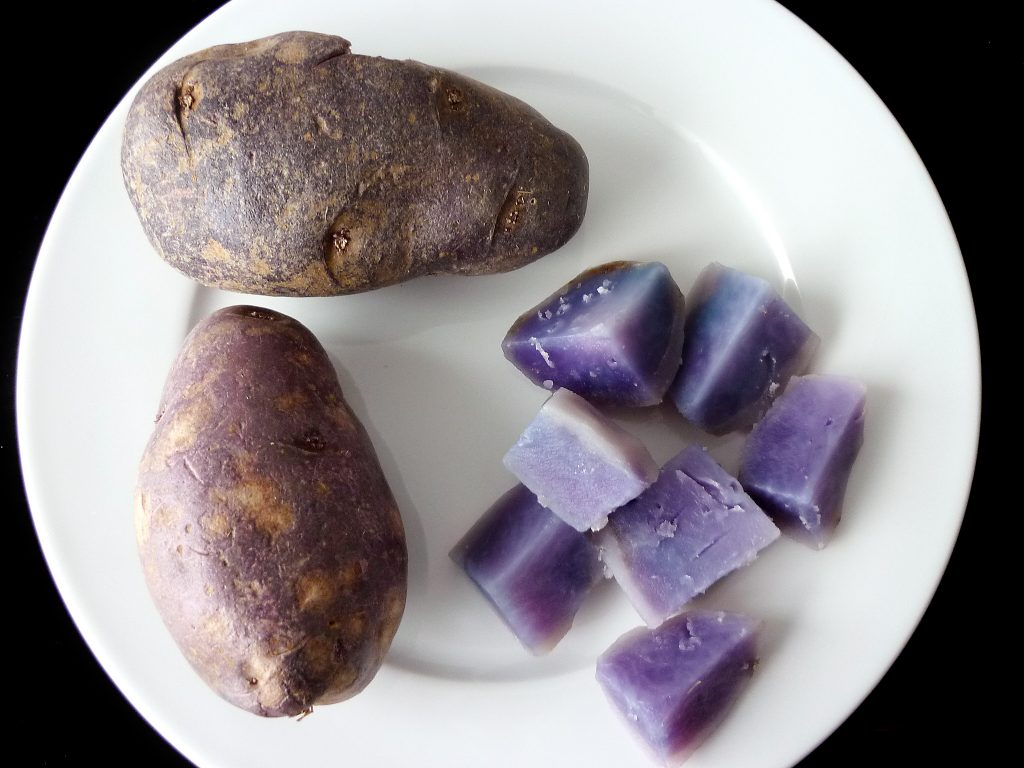 Blue Swede (non-gmo) purple potato variety. Image by Paebi